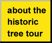 tour page button
