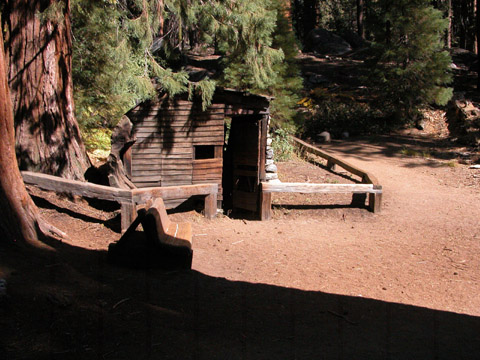 Image http://bioimages.vanderbilt.edu/lq/kirchoff/wsegi2-wplog-house0311bk501.jpg