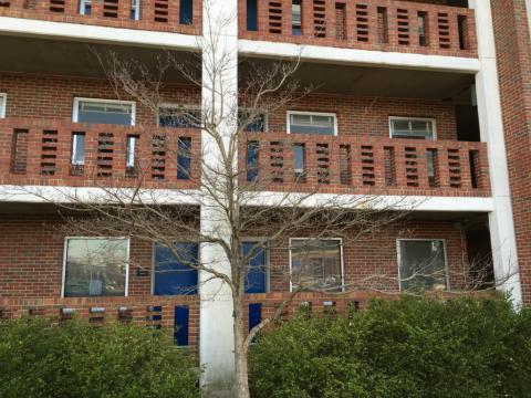 Image http://bioimages.vanderbilt.edu/lq/phoebusp/w2638.JPG